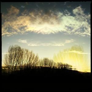 Eine Weitere Aufnahme der Bäume an der Natostraße mit der Hipstamatic bei Sonnenaufgang #Hipstamatic #Salvador84 #Blanko_Noir