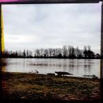 Hochwasser an der Natostrße in Lampertheim. Aufgenommen mit der Hipstamatic