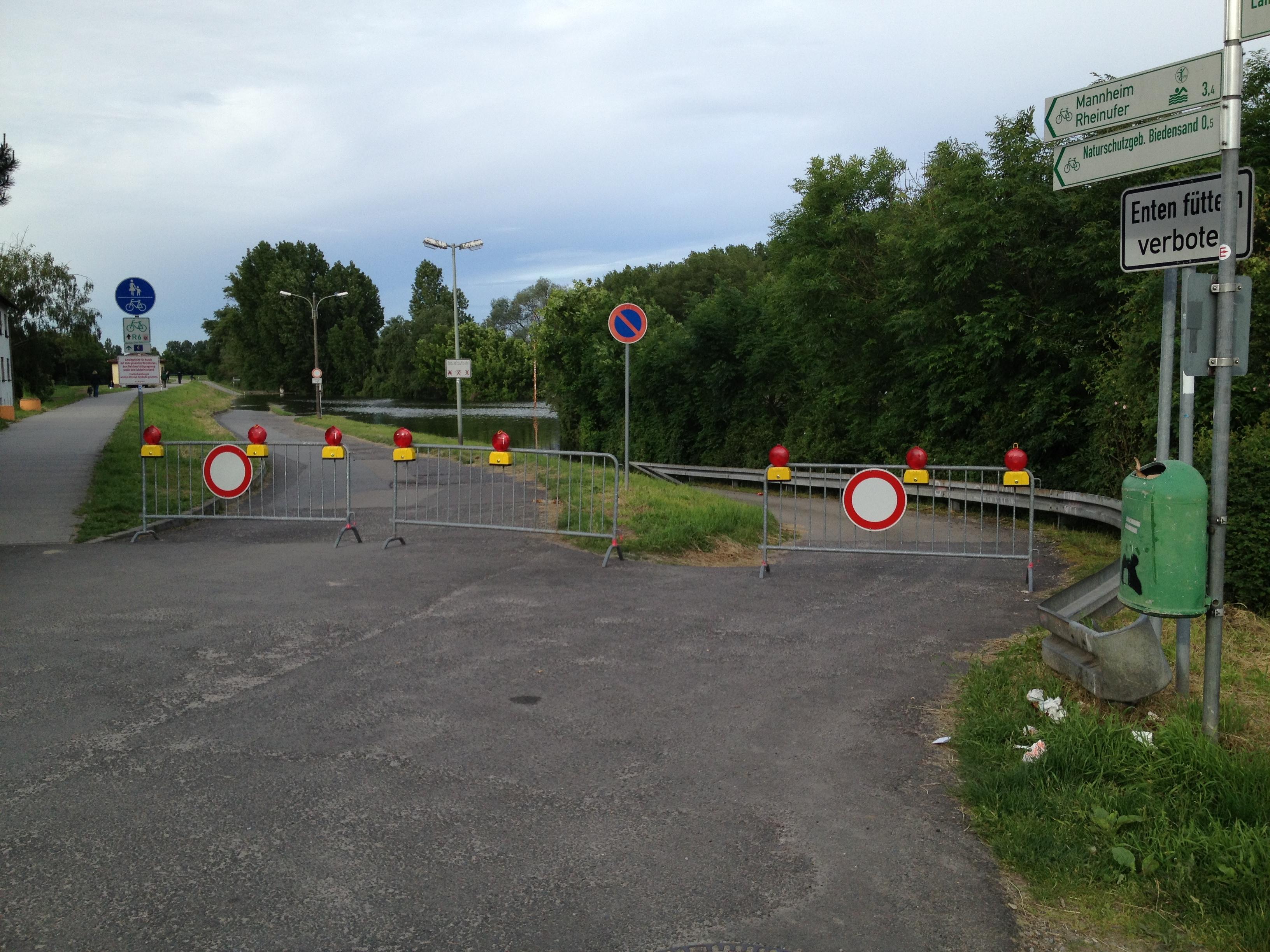 Absperrung am Rheindamm wegen des Hochwassers