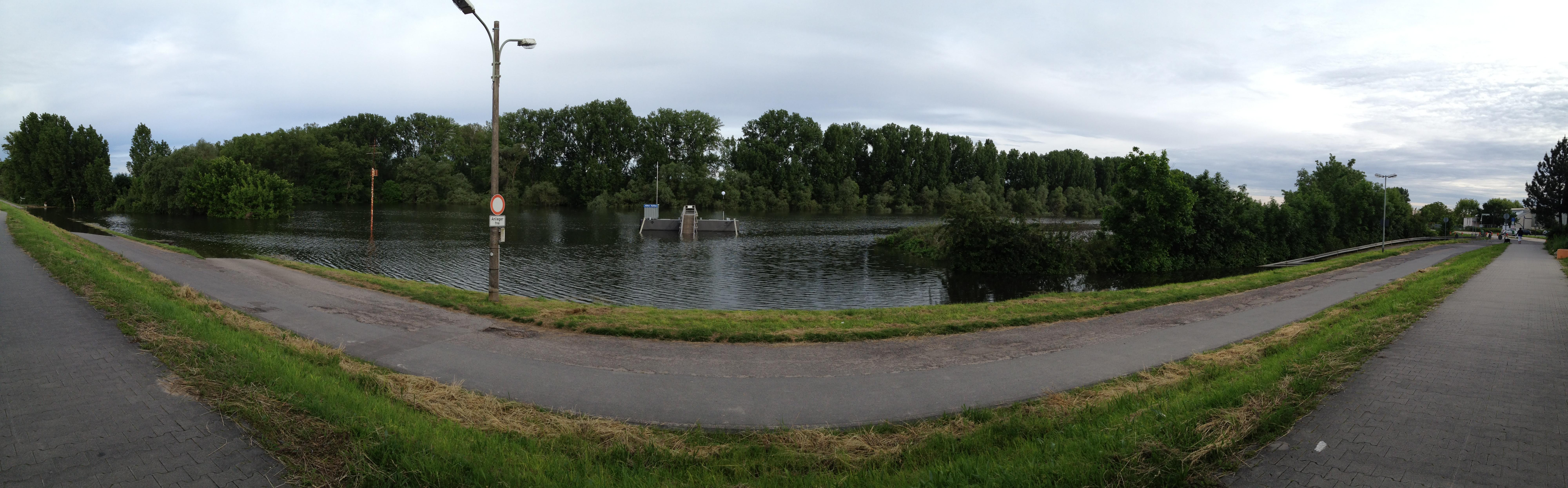 Panoramaaufnahme vom Hochwasser auf dem Biedensand in Lampertheim 2013