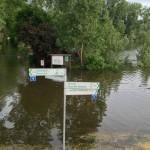 Blick auf den Biedensand in Lampertheim beim Hochwasser im Sommer 2013