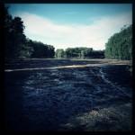 Hochwasser auf dem Biedensand in Lampertheim. Aufgenommen mit der Hipstamatic am 16.06.2013