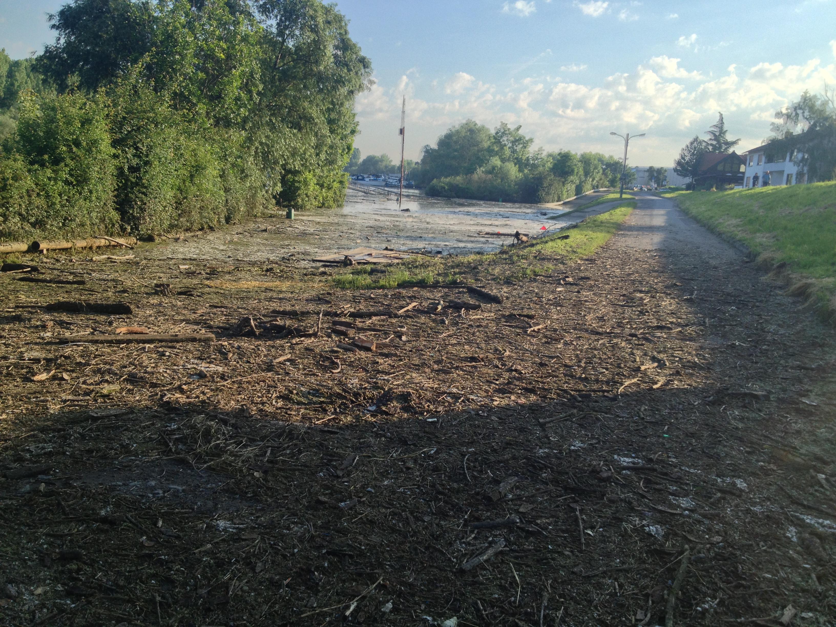 Hochwasser auf dem Biedensand in Lampertheim. Aufgenommen am 07.06.2013