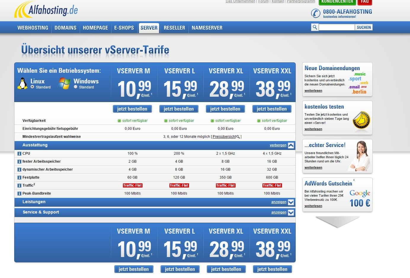 aöfa-hosting webseite