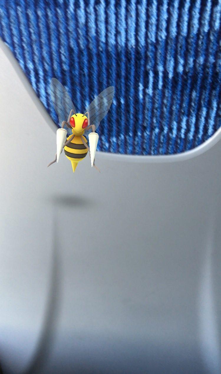 Ein Bibor der mir im Zug begegnete